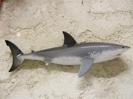 Grand requin blanc 50cm