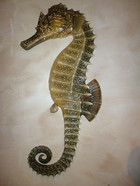Hippocampe 90cm