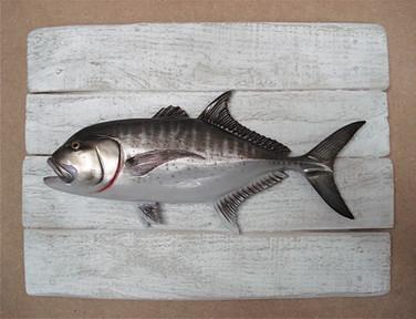 Carange ignobilis 19x25cm