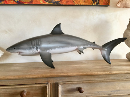 Grand requin blanc 80cm (1)