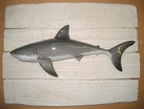 Grand requin blanc 19x25cm