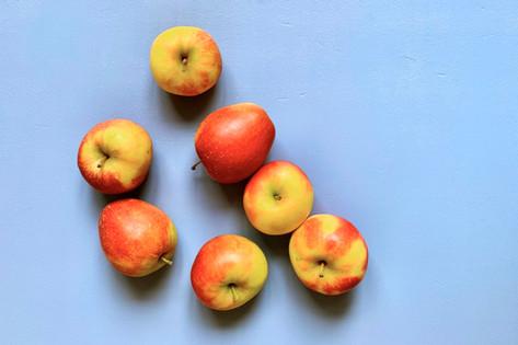Der Apfel - unser Liebling unter den Obstsorten