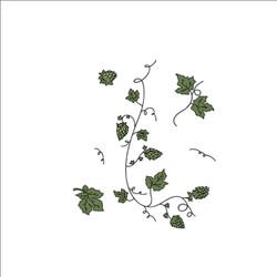JPEG COLOURED Hops Plant low resolution.