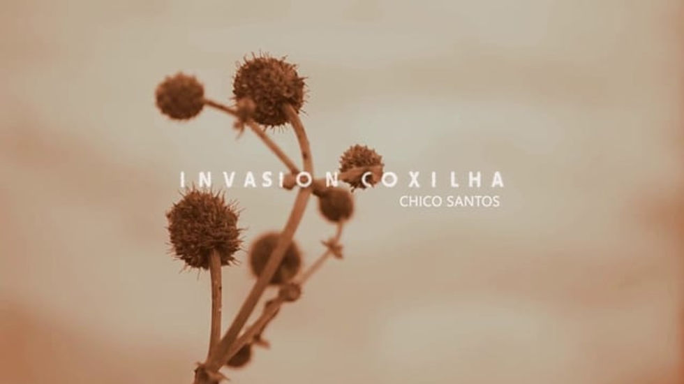 Invasion, Coxilha