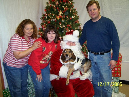 Christmas at Happy Paws