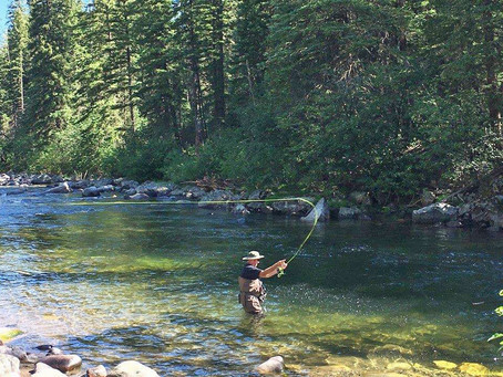 Pursuing the Good Life:  From Surviving to Thriving in Challenging Times