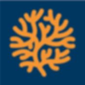 logo_navyback.jpg