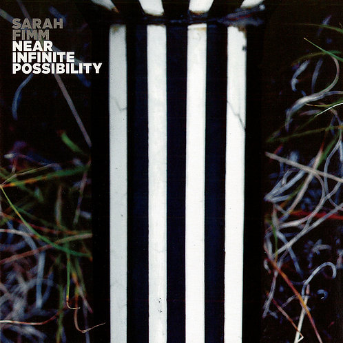 Near Infinite Possibility CD ~ Free Domestic Shipping