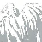 Sarah Fimm White Birds Album