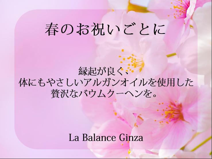 ブログ画像.png