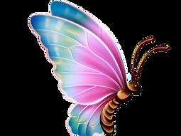 butterflies2.png