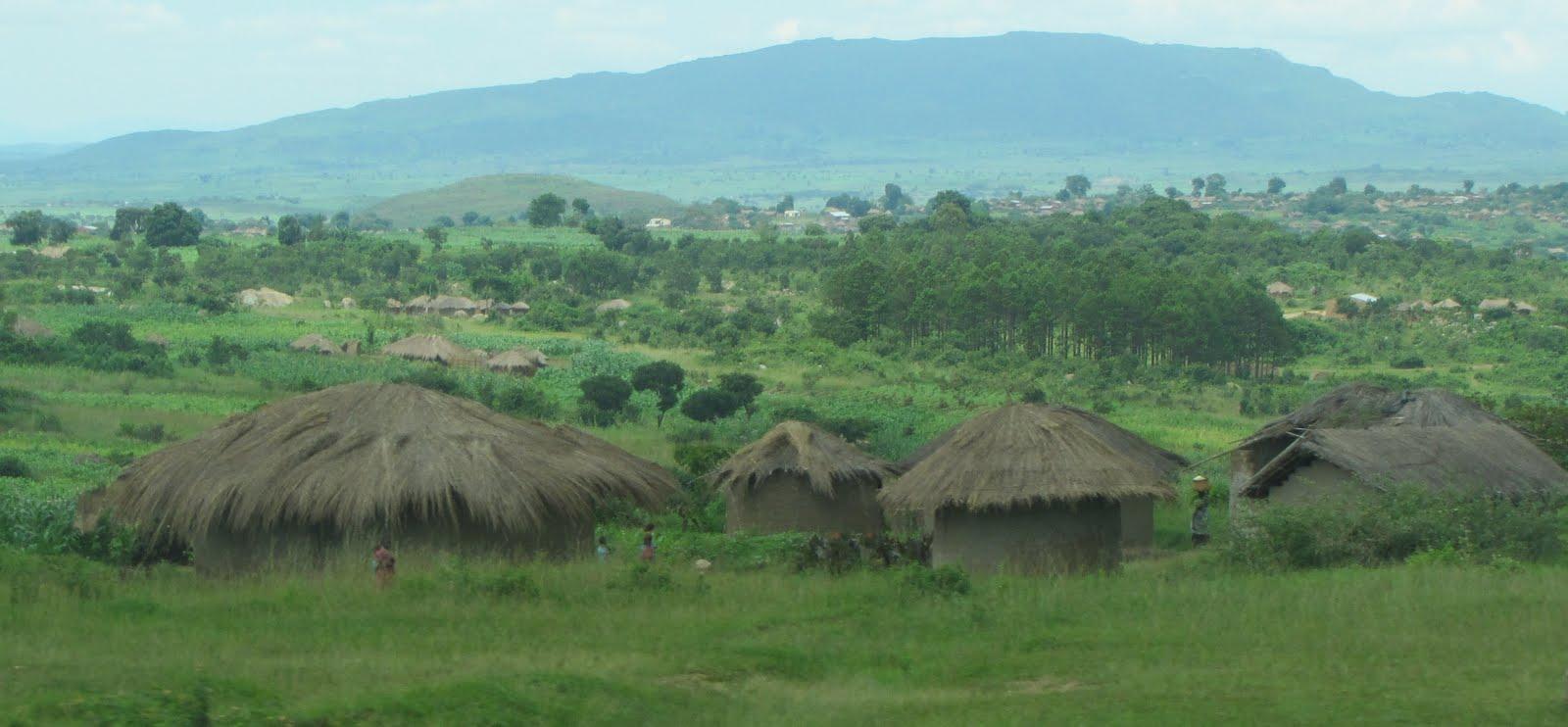 Village Cross-section in Rain Season
