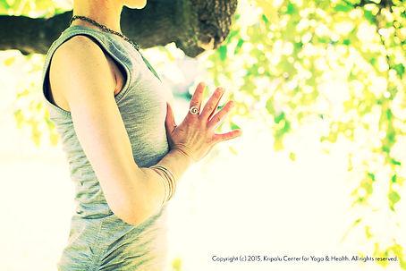 jess frey www.jessfrey.com