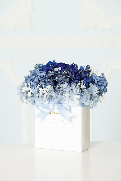 The Blue and White Porcelain