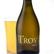 Troy Funk Odyssey 6.5% 500ml