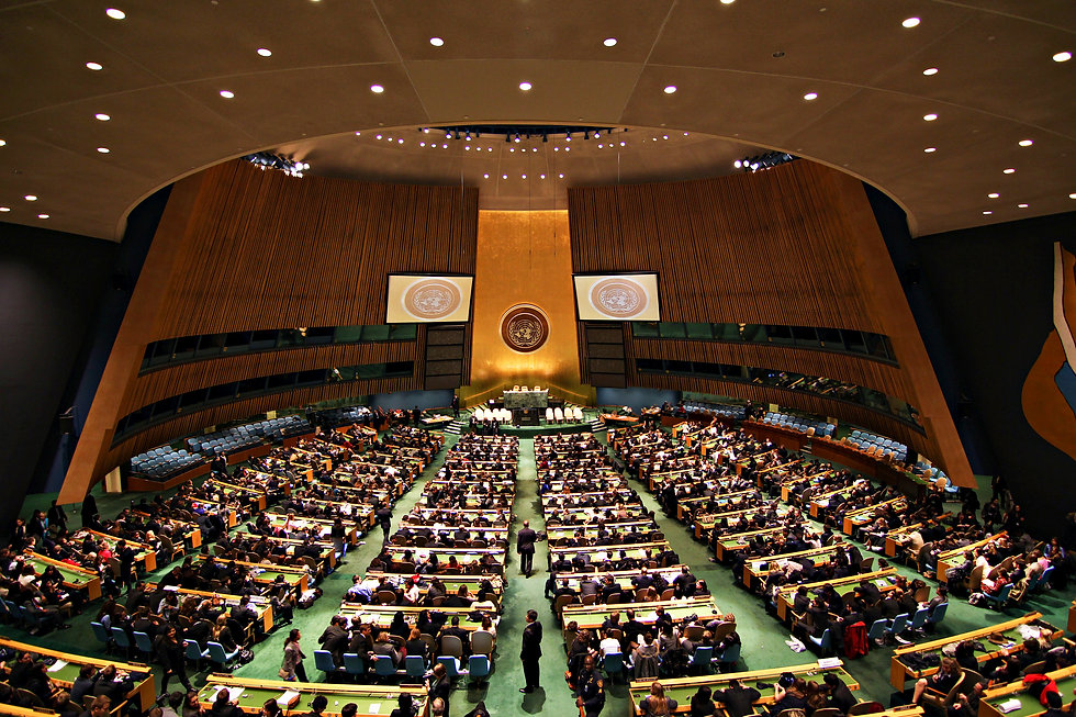 1605802356-un-resolution-condemns-human-
