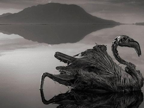Notran lake, Tanzania