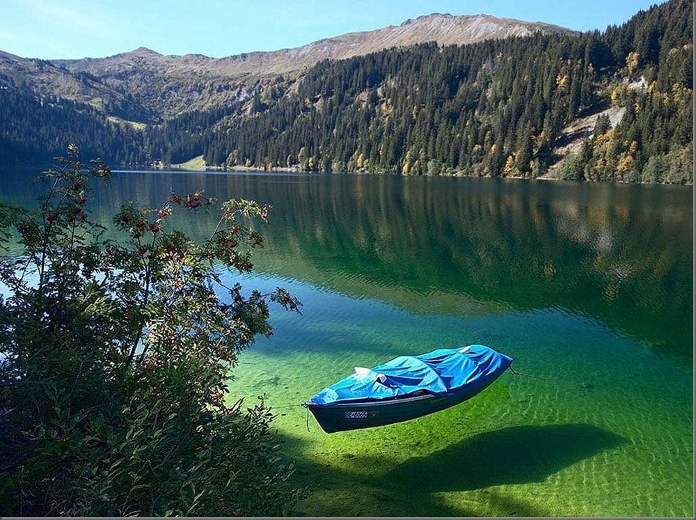 Nelson lakes park, New Zealand