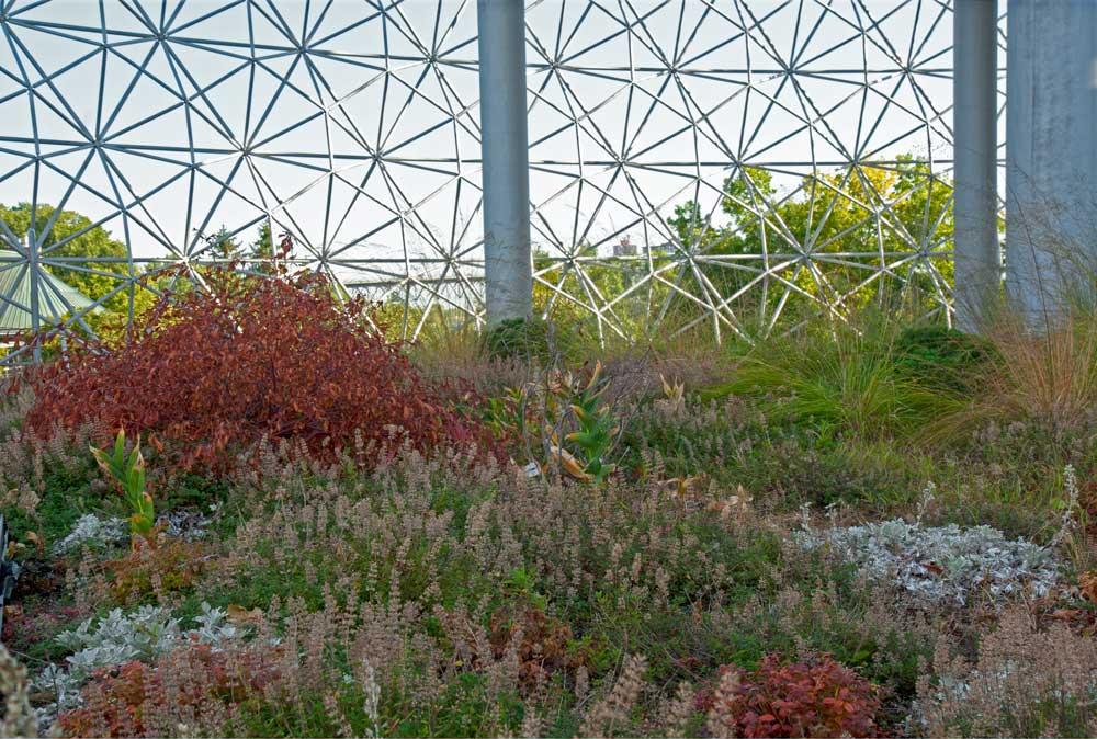 Biosphere-Toit-07.jpg
