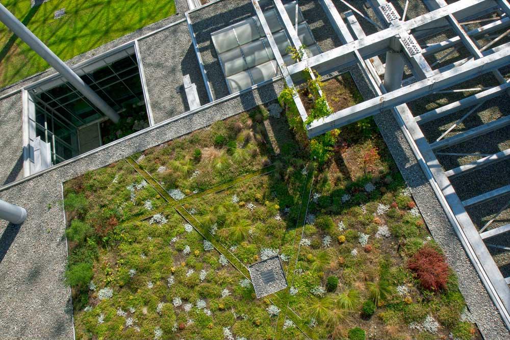 Biosphere-Toit-11.jpg