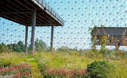 Biosphere-Toit-10.jpg