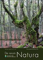 DRN 63 speciale alberi web_Pagina_01.jpg
