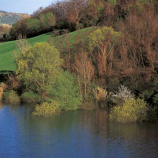 Veduta della Riserva Lago di Penne