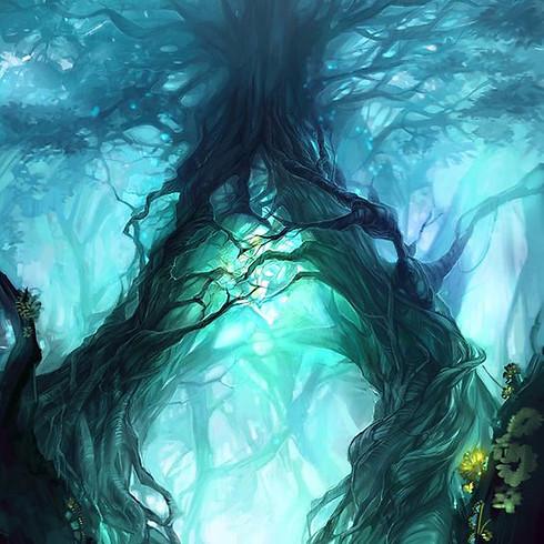 Voyage Chamanique - Esprits de la Nature