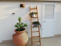 the gardenhouse