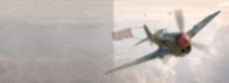 P-40 3D art