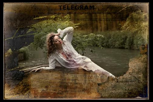 THE TELEGRAM ( 2014 )