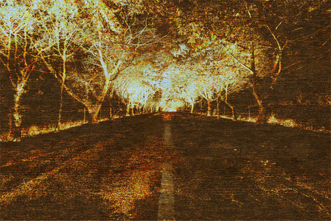 THE NIGHT ROAD