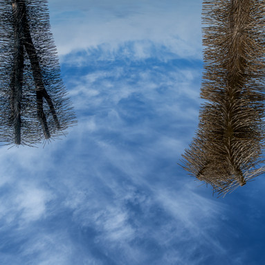 TWO CHIMNEY BRUSHES ADRIFT IN SPACE