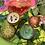 Thumbnail: Soulful Flowers