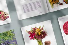 Las Rosas de Aurelia / Diseño de catálogo floral