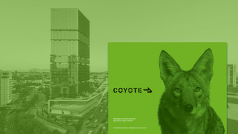 Coyote Logistics / Workplace branding