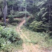 Ashe County land for sale on Big Laurel Creek