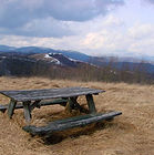 ashe-county-155-acres-bongaard-20.jpg