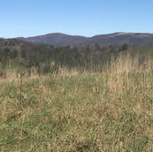 Ashe County Land over 4000' elevations