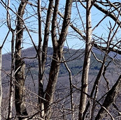 Land with Views of Grandfather Mountain