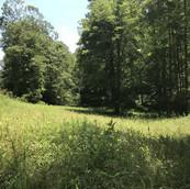Hughes 184-Wilkes County-16.jpg