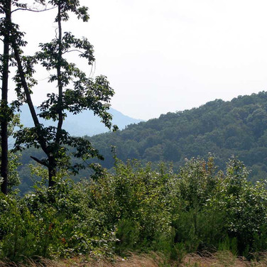 North Carolina Brushy Mountain Land