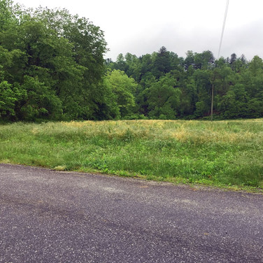 Wilkes County Mountain Land on Hwy 421