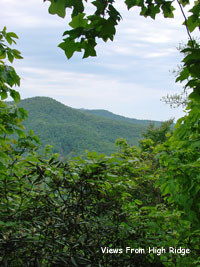 Land near Blue Ridge Parkway
