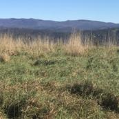 high elevation mountain land