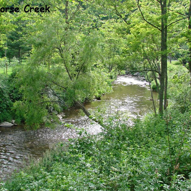 Ashe County Land on Big Horse Creek