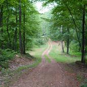 Land in Alexander County North Carolina