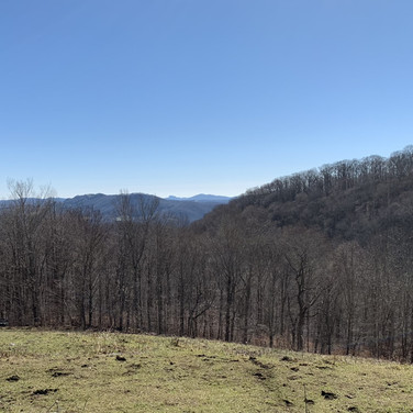 Avery County Land in Newland