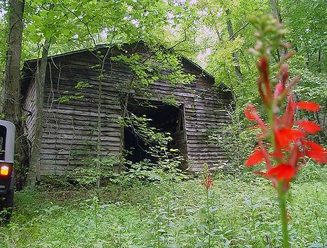 Alexander County Land