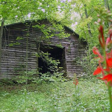 Alexander County NC